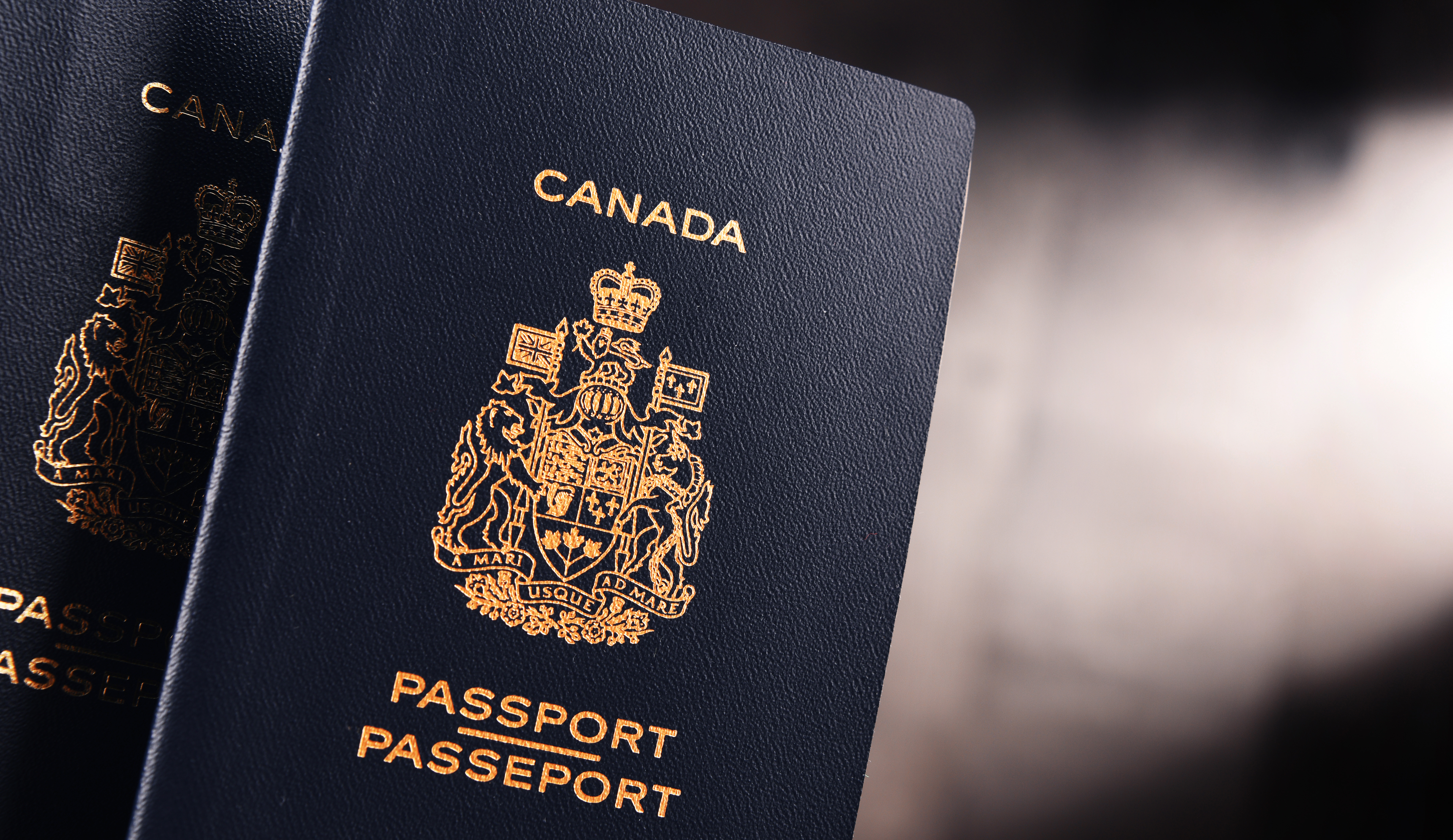 Canadian passport, it can be obtained by self-employed in Canada